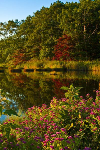 Onset of Autumn