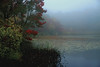 FC002<br /> Horse Pond in Fog<br /> Salem, Connecticut