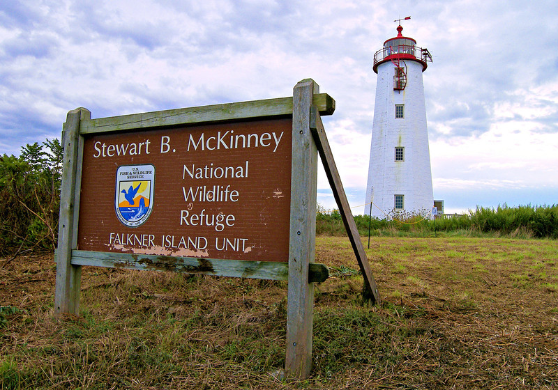 The station is now part of the Stewart B. McKinney National Wildlife Refuge and is off limits to visitors most of the year.  It is home to one of the largest colony's of roseate terns in the U.S.