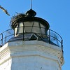 "A Lewis optic was installed in the new lantern room using 8 oil lamps with 14 inch reflectors.  In the American Coast Pilot, Edmund Blunt stated his opinion that: ""A more contemptible Lighthouse does not disgrace Long Island Sound, most shamefully erected and badly kept"", however despite Blunt's derision the lighthouse has stood for almost 200 years.."