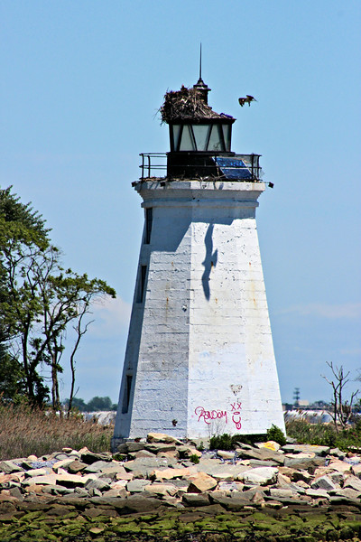 In 1983 the first effort to restore the Fayerweather Island Lighthouse began with the efforts of a group known as the Friends of Seaside Park.  The group raised funds and replaced the lantern glass and secured the door and windows.  They also cleared the island of garbage and established the island as a nature preserve.  But once again vandals struck and destroyed the work which had been accomplished.