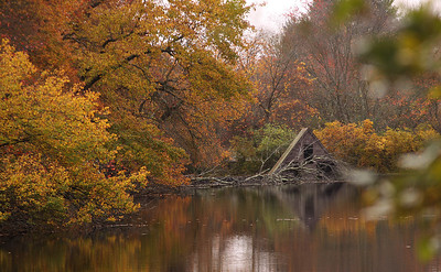 Connetquot River State Park Oakdale NY