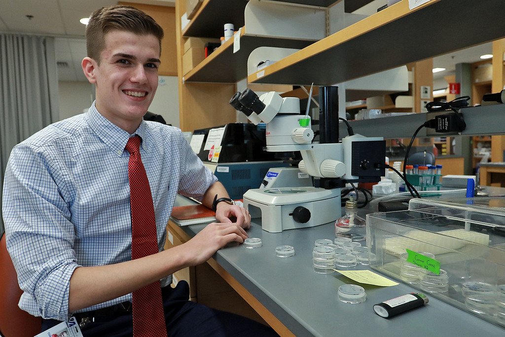 . Leominster High School junior Connor Casey talks about doing experiments on C. elegans at UMass Medical School Aaron Lazare Research Building. Here Casey works in the lab on Tuesday, October 9, 2018 with the C. elegans. SENTINEL & ENTERPRISE/JOHN LOVE