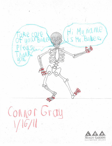 """Mr. Bones"" by Connor Gray"