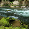 Water and Green Moss in the Green River Gorge