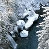 Winter at Paradise