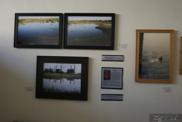 International Wetlands Day Photo shows. Long Beach California 2009-2011