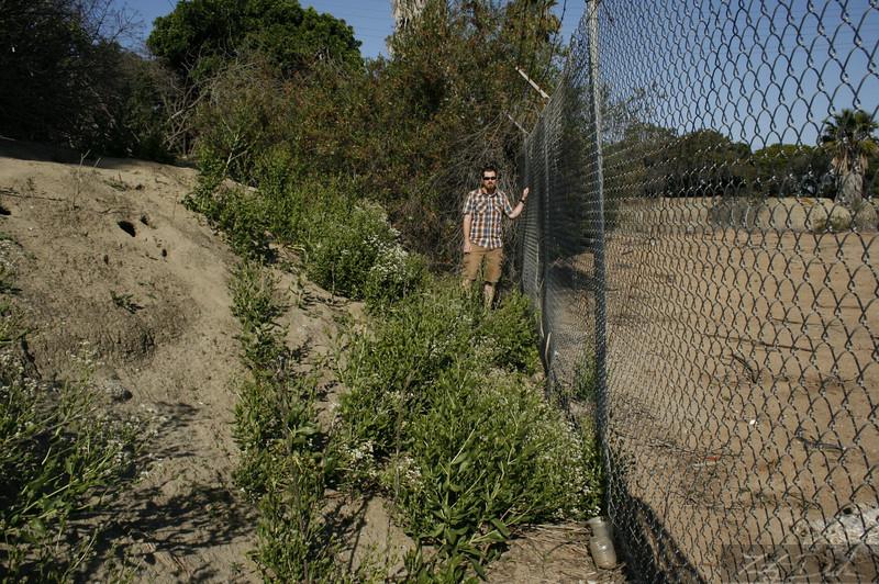 Burm&Fence Height Comparison