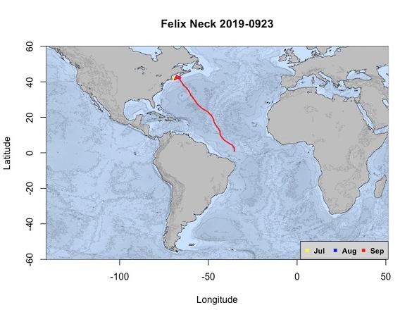 Felix Neck