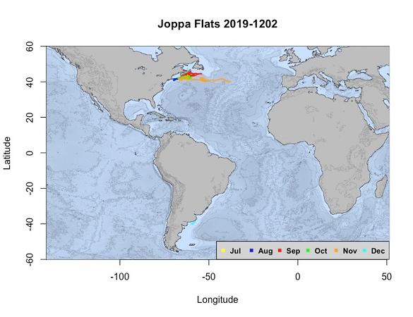 Joppa Flats