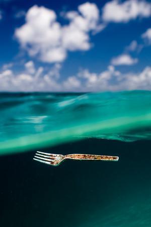 Northshore Marine Debris