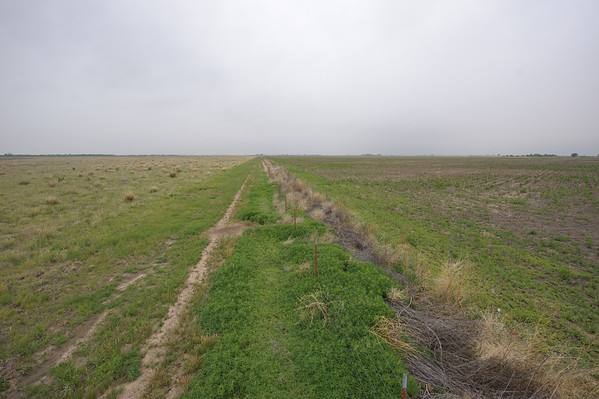 Examples of good and bad grass trimming along fence lines in Anson, Texas.