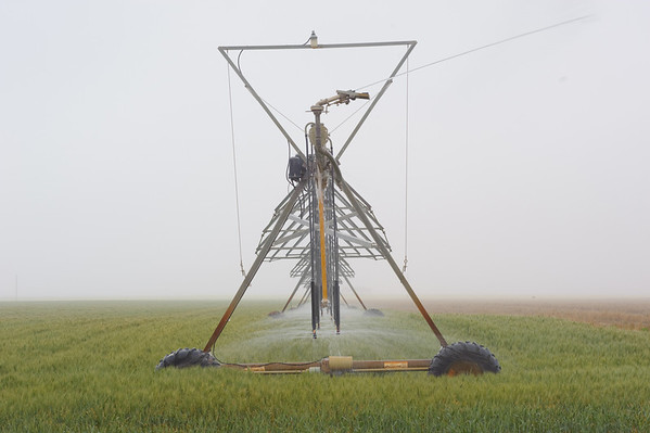Center-pivot sprinklers are used more than other irrigation systems for cropland.