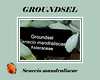 Plant ID label for Groundsel