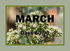 March marker for xeric plant blooms and foliage through the year