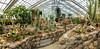 Panorama, Arid House, Conservatory, Matthaei Botanical Gardens