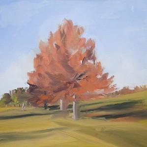 Tree Portrait 12