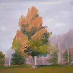 Tree Portrait 2
