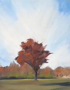 Tree Portrait, 9