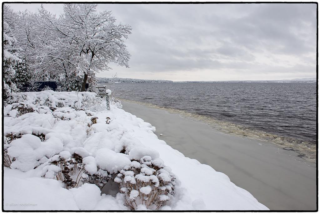 Winter Garden River Side