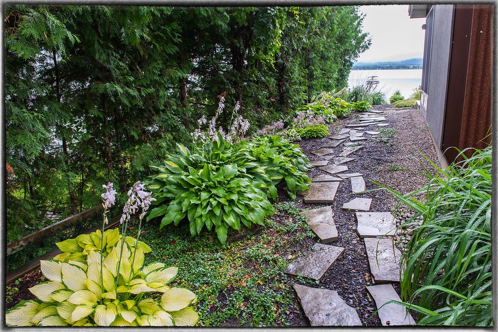 Hosta Garden Path to Riverside