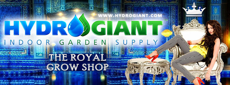 Hydro Giant July 2013