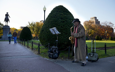 "A street musician playing ""Yesterday"" on his saxophone in the Public Garden in Boston."