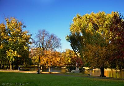 Public Garden, Boston