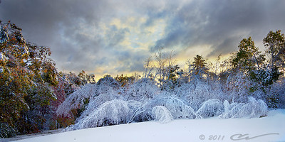 Early snowfall in New England brings beauty and devastation...