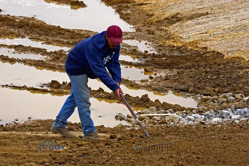 Landscape construction: Laborer uses hand rake to smooth sloped wall of runoff water catchment. Sams Club, Ann Arbor, 2003.