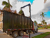 Hurricane debris removal, maintenance: Crane grappler loads dead tree onto debris truck for disposal. Municipal removal of Hurricane Wilma plant debris, a gigantic job. This is one of many, many such operations. The City makes three separate pickups, because of the vast quantity of debris. Naples, Florida November 2005.