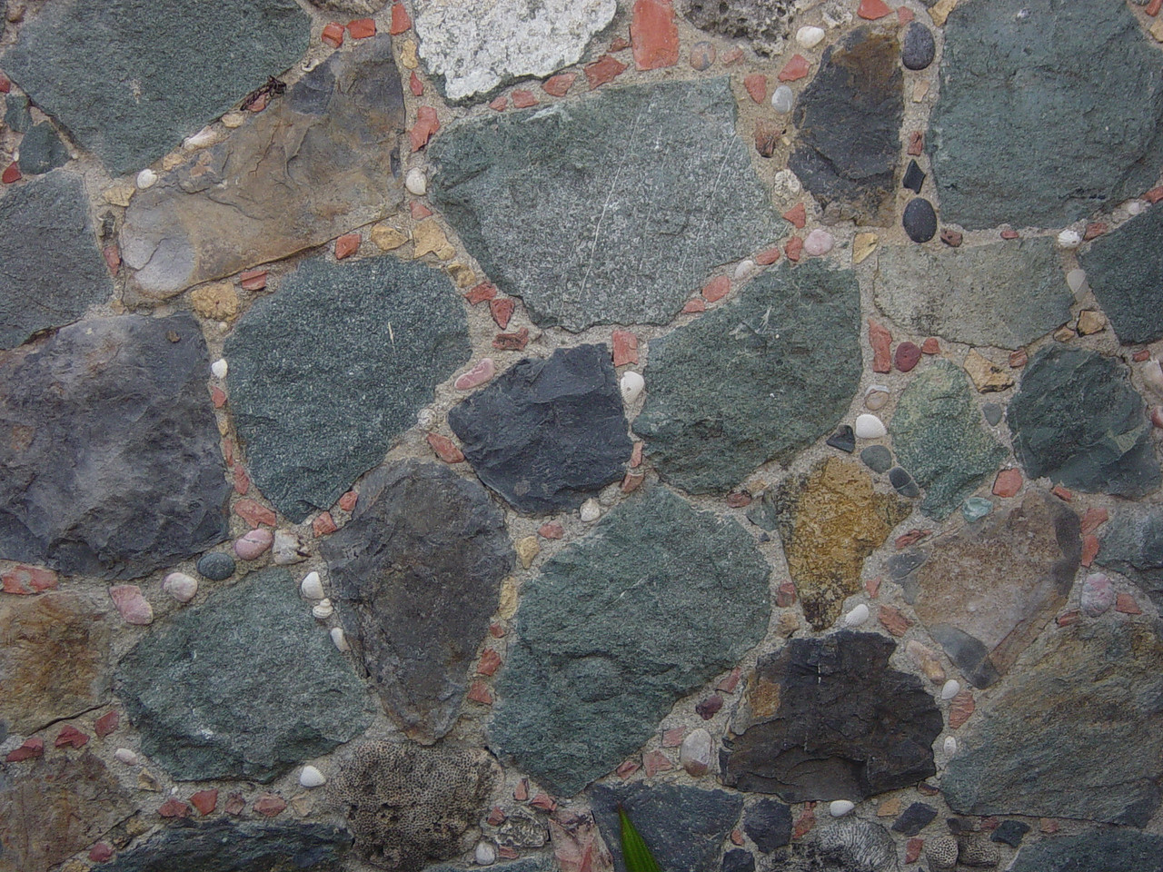 Stone and shell wall