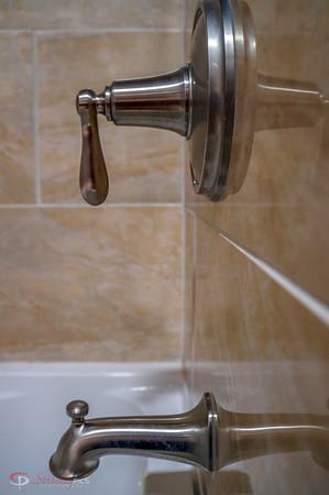 Shower companion