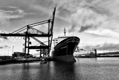 The Horizon Consumer in the Port of Tacoma, Washington