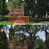 A before-and-after composite shows a view of the quad looking south.  At top, a photo taken on June 16 and at bottom, a photo taken three days after the July 3 storm.