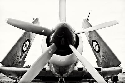 Hawker Sea Fury at Rest- Watsonville, CA