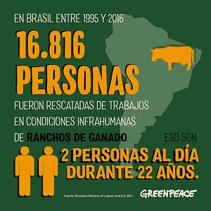 Informe carne GP internacional