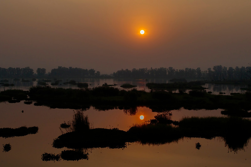 sunset at bhindawas wildlife sanctuary