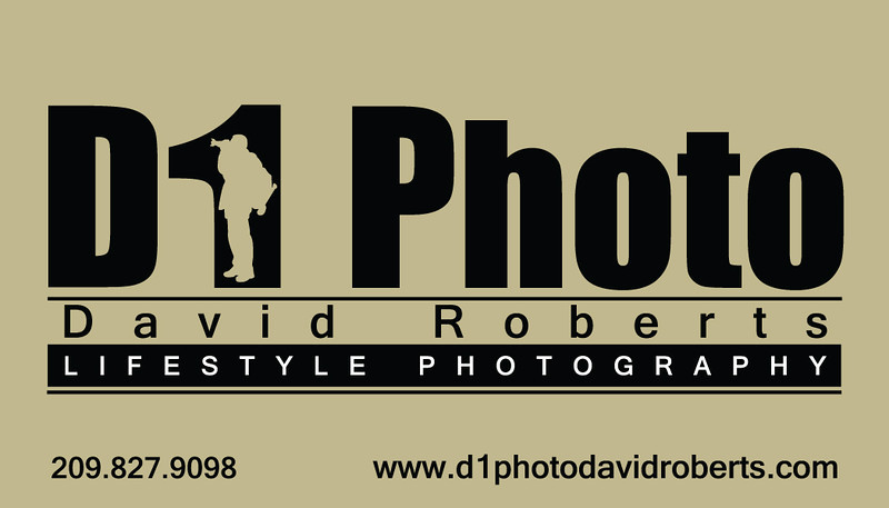d1photodavidroberts@gmail.com