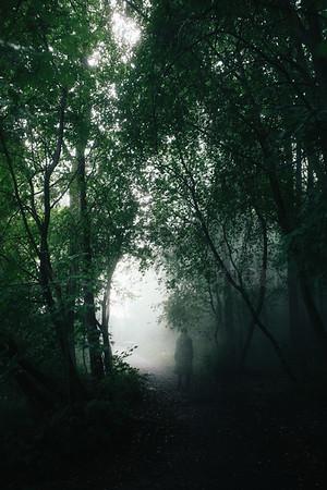 Walk Through Rain III (Vivid Colours)