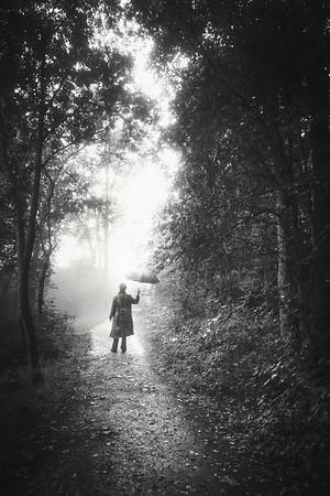 Walk Through Rain VII (Home)