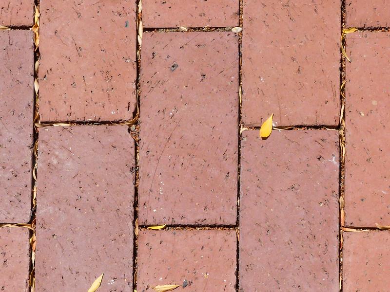 Sonoma - Leaf and Bricks