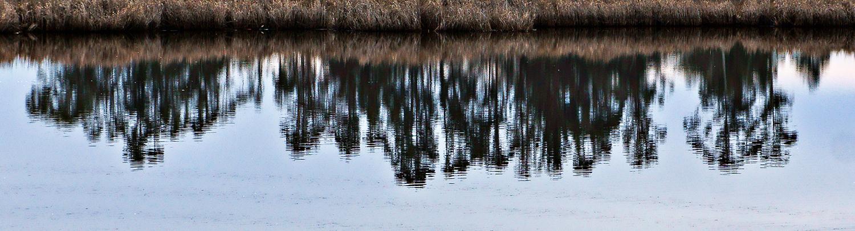 Pacheco Pond
