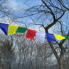 Sang Offering - Prayer Flags 1