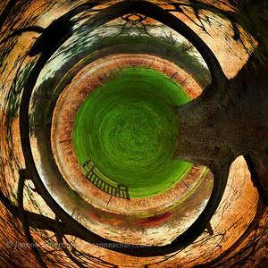 Cambium Circle