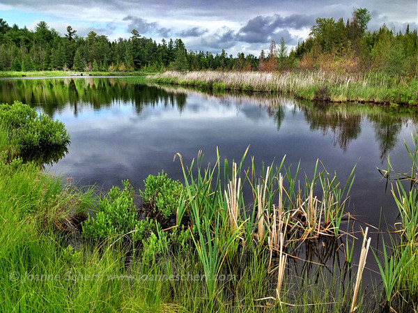 Sedge Meadow River