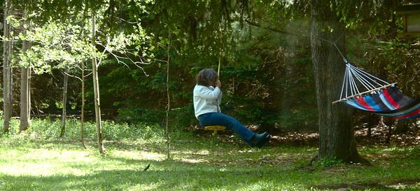 Swing - 1