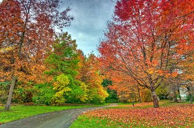 VanDusen Garden Vancouver, British Columbia