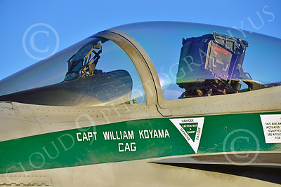 Boeing F-18E-USN 00203 Close up of markings on a static Boeing F-18E Super Hornet USN 166901 VFA-195 DAMBUSTERS commanding officer's airplane CHIPPY HO USS George Washington NF code at NAS Fallon 2-2015 military airplane picture by Peter J Mancus