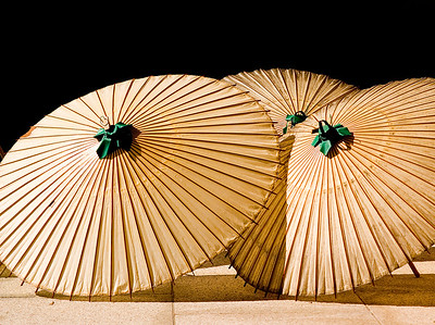 Umbrellas at Japanese shrine.